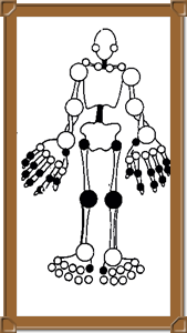 Joints that may be affected typically by Osteoarthritis are marked in black.